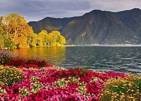 سوئیس اتریش آلمان