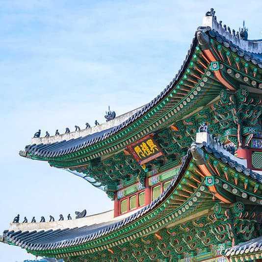 | Safiran south korea3 1