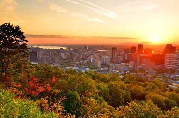 10 جاذبه گردشگری برتر در مونترال